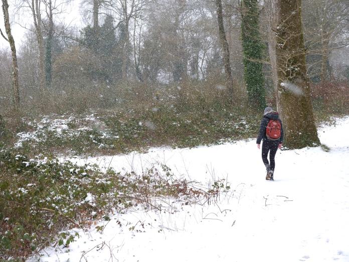 Caoilfhionn blizzard